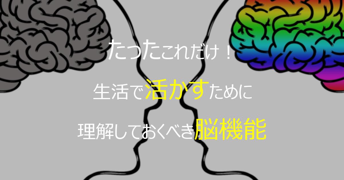 たったこれだけ! 生活で活かすために理解しておくべき脳機能
